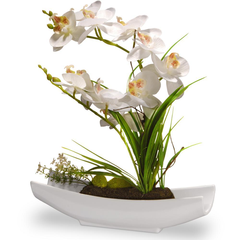Orchid Flowers Decoration
