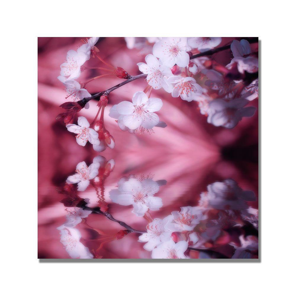 Trademark Fine Art 18 in. x 18 in. Relax Canvas Art-DISCONTINUED