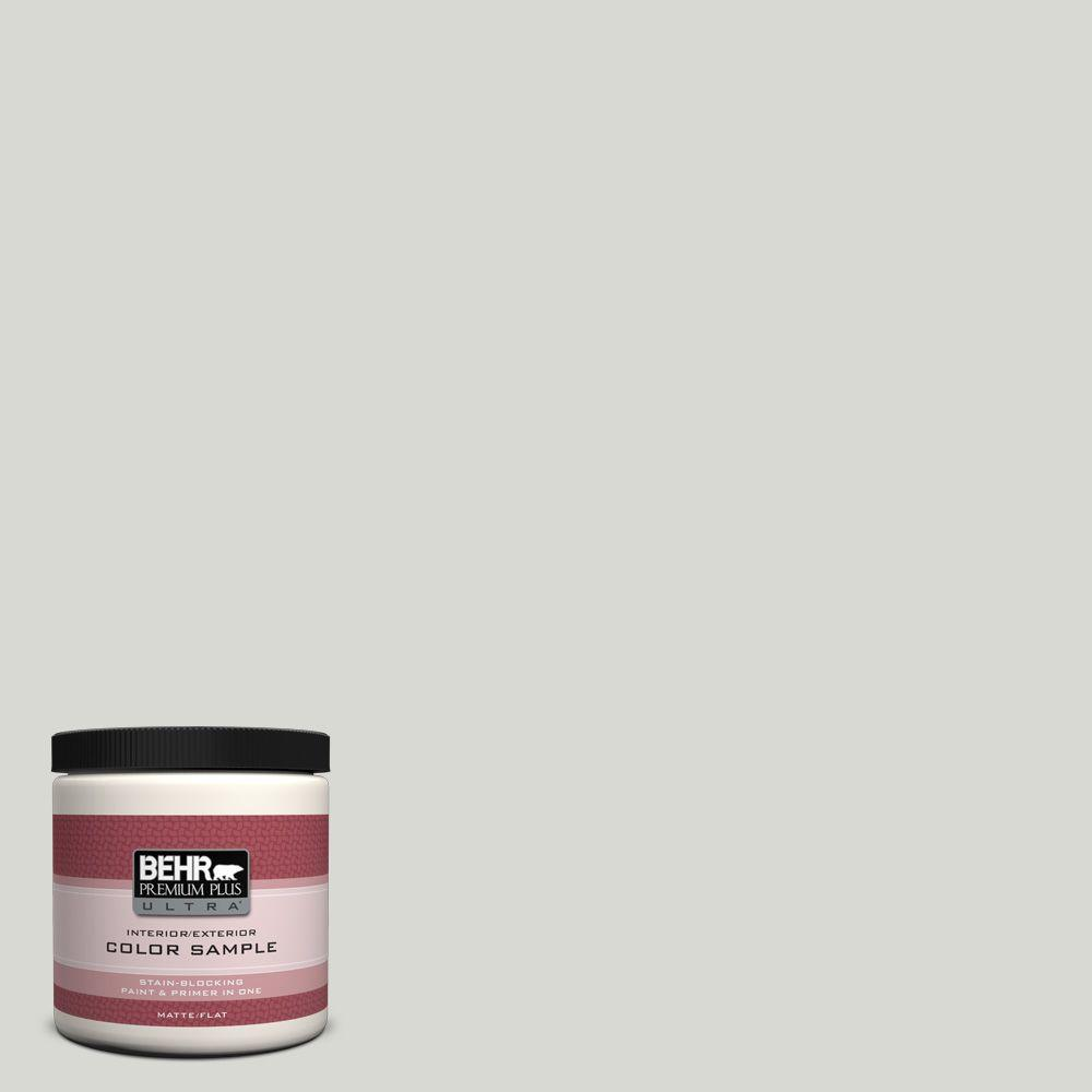 8 oz. #N360-1 Seagull Gray Flat Interior/Exterior Paint and Primer in