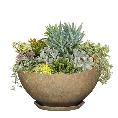 10 in. Earth Rosie Bowl Resin Planter