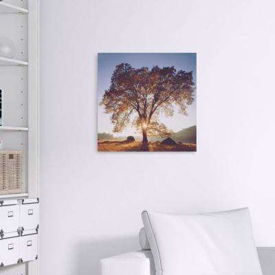 Black Oak Sunset Landscape Canvas Wall Art