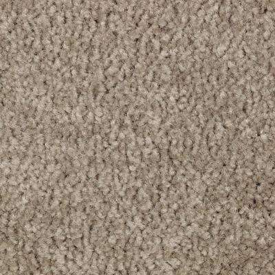 Carpet Sample - Best Wishes II - Color Harmony Texture 8 in. x 8 in.