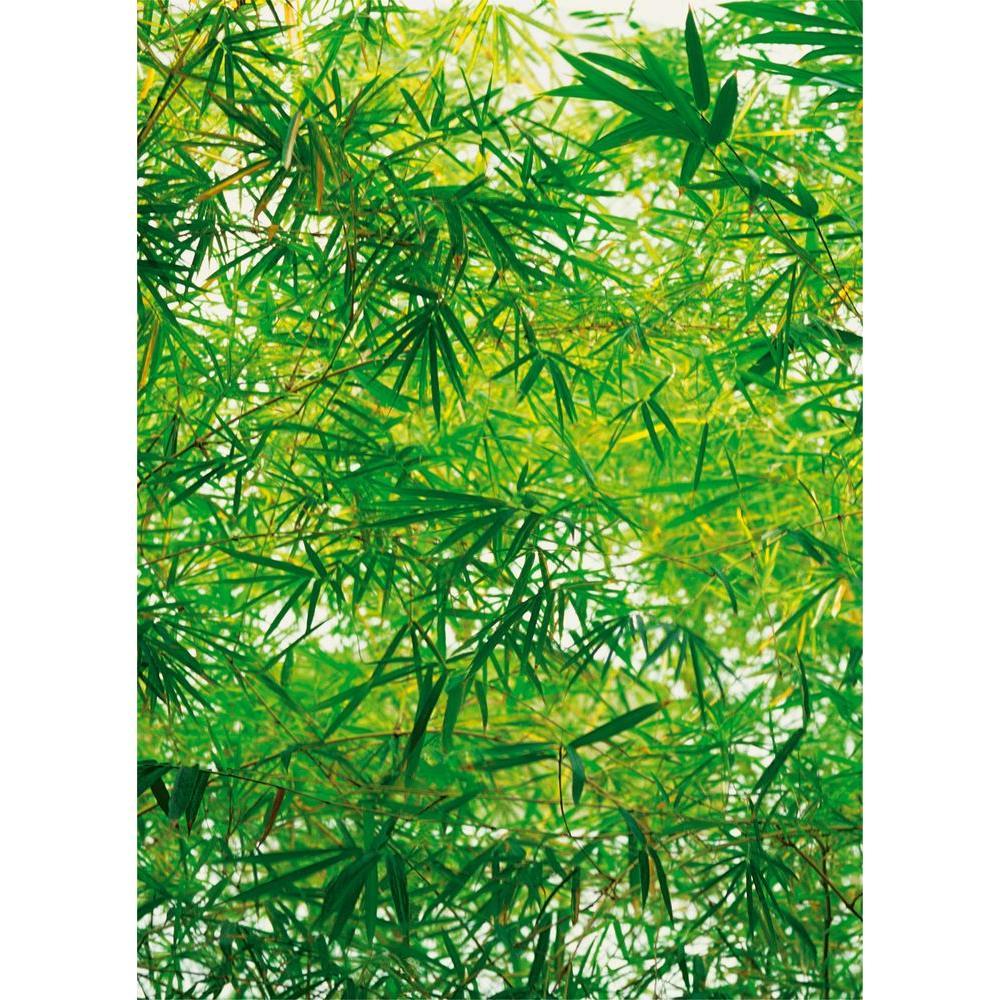 100 in. x 72 in. Bamboo Wall Mural