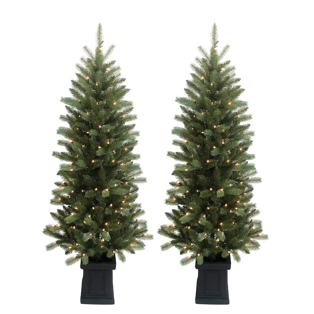 Home Accents Holiday 6 ft. Pre-Lit Douglas Fir Potted ...