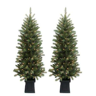6 ft. Pre-Lit Douglas Fir Potted Artificial Christmas Tree with 150 Clear Lights (2-Set)