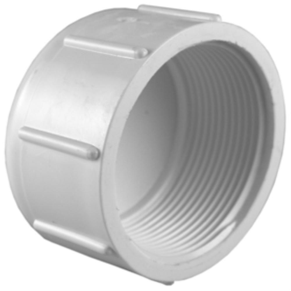 Pvc Pipe: Charlotte Pipe 3/4 In. PVC Sch. 40 FPT Cap-PVC 02117