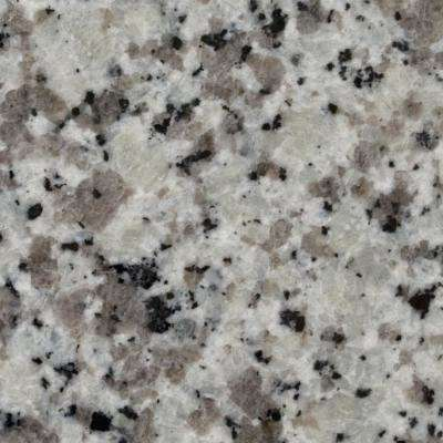 3 in. x 3 in. Granite Countertop Sample in Blanco Taupe