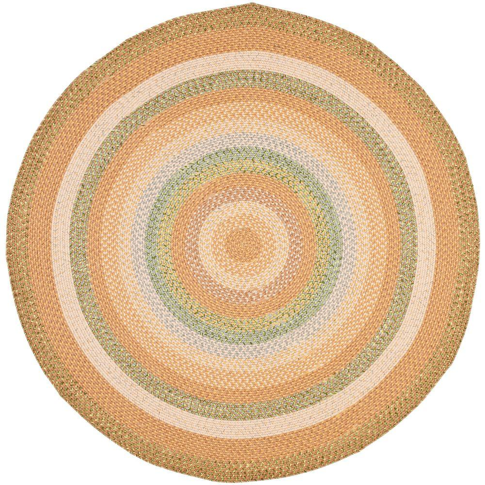 Braided Tan/Multi 8 ft. x 8 ft. Round Area Rug