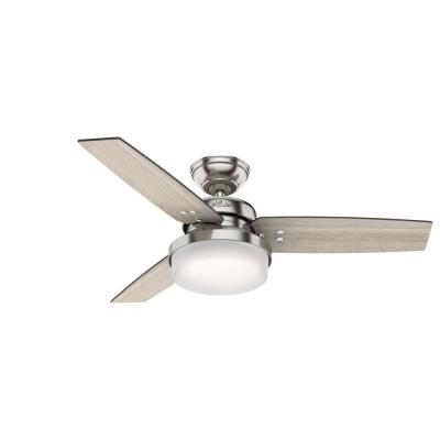 Sentinel 44 in. Indoor Brushed Nickel Ceiling Fan with Light Kit and Remote Control