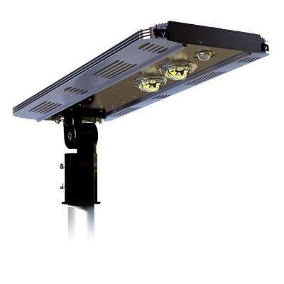 Solar Power SMART 2400LM Motion Sensing Outdoor Integrated CREE LED Brown Street Area Light