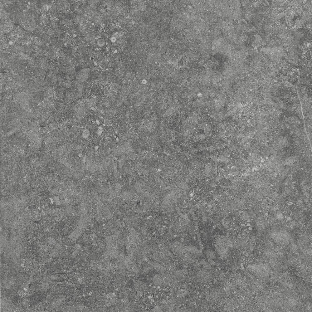 Daltile Albany Light Gray Matte 24 In X 24 In Color Body