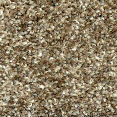 Carpet Sample - Graceful Style I - Color Richmond Texture 8 in. x 8 in.
