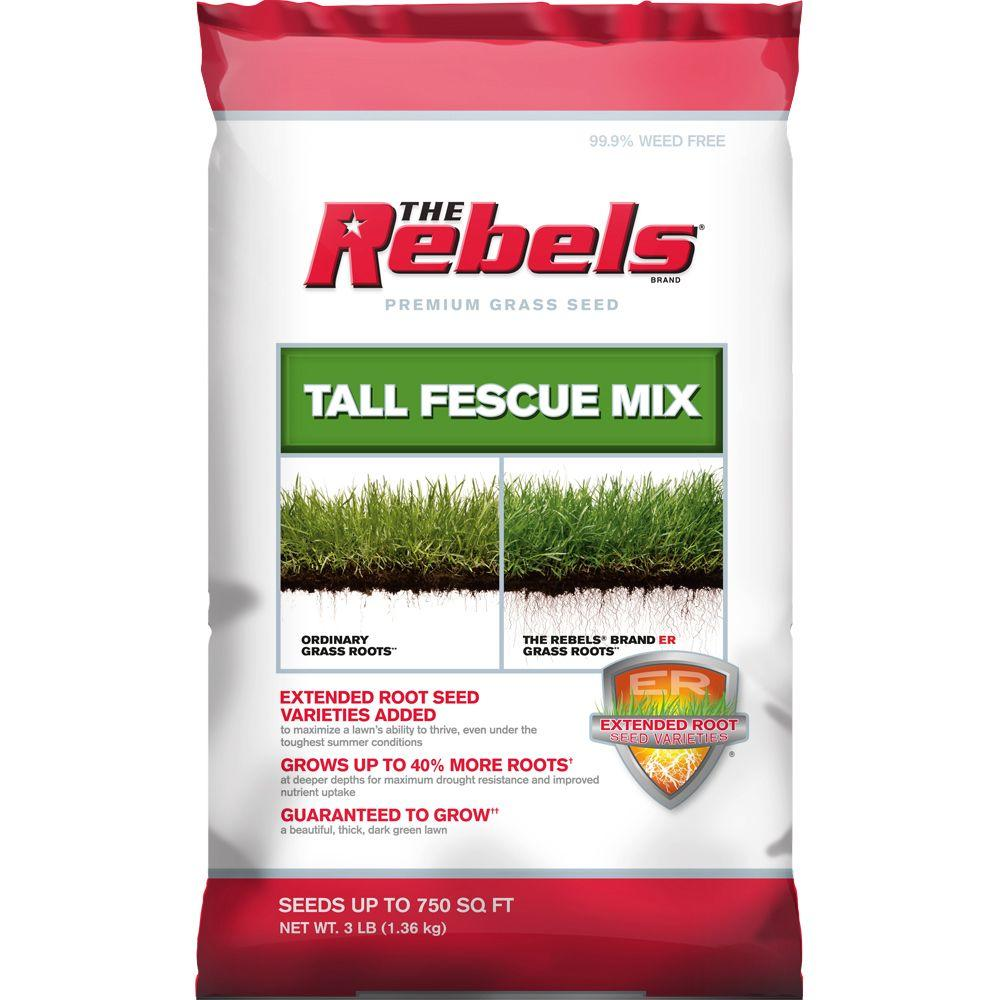 The Rebels 3 lbs. Tall Fescue Grass Seed PCG Mix