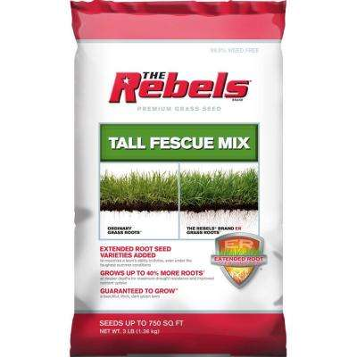 3 lbs. Tall Fescue Grass Seed PCG Mix