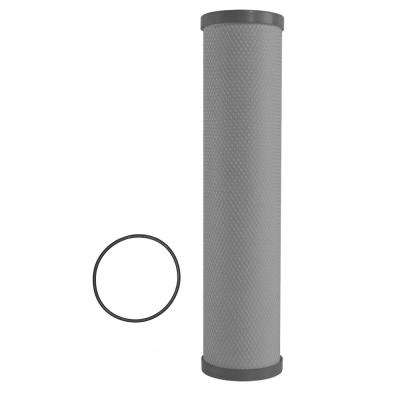 1-Stage Plus Lead and Cyst Whole House Water System Replacement Filter