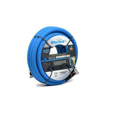 3/8 in. x 10 ft. BluBird Rubber Air Hose