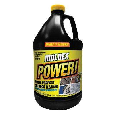 1 gal. Power Cleaner