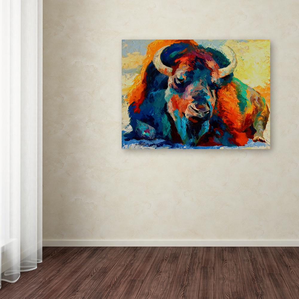 Trademark Fine Art 35 In X 47 In Quot Winter Bison Quot By