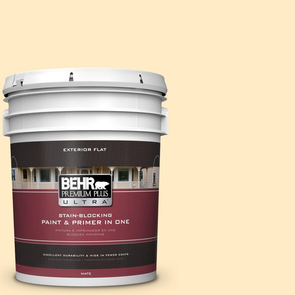 5-gal. #330A-2 Frosted Lemon Flat Exterior Paint