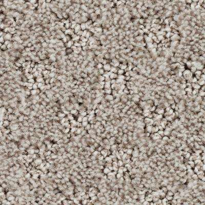 Shiloh Point - Color Easily Sueded Pattern 12 ft. Carpet