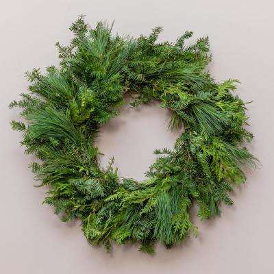 24 in. Live Wreath, Fresh Cut Mixed Greens, Holiday Decor