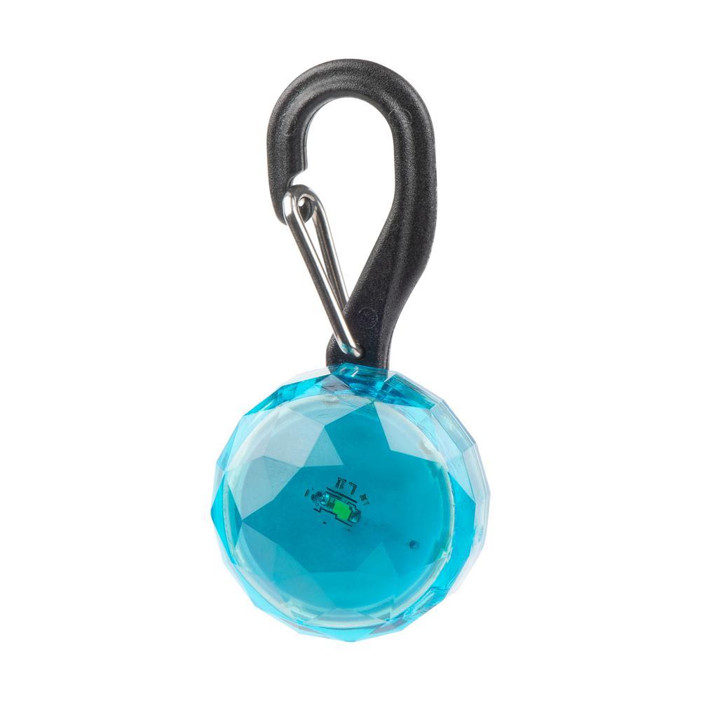 PetLit Collar Light in Turquoise