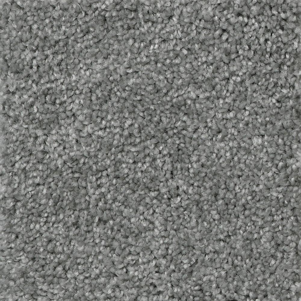 TrafficMaster Lucky Penny - Color Charmed Texture 12 ft. Carpet