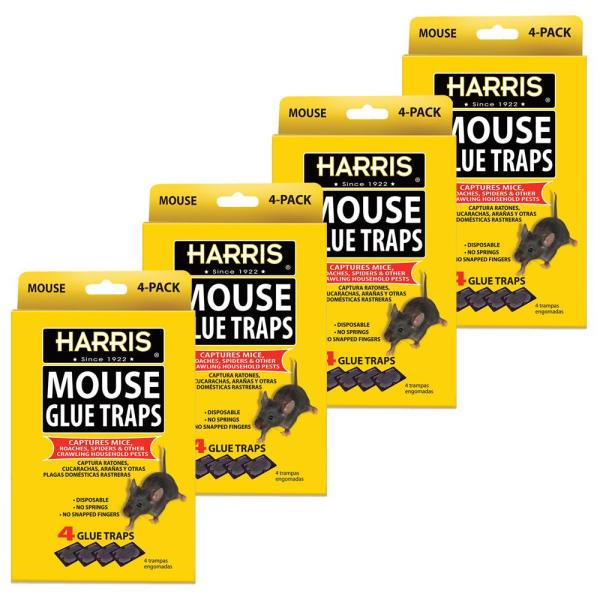 Mouse Glue Traps (4-Pack)