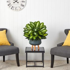 2 ft. Artificial Golden Dieffenbachia Plant in Black Planter with Stand