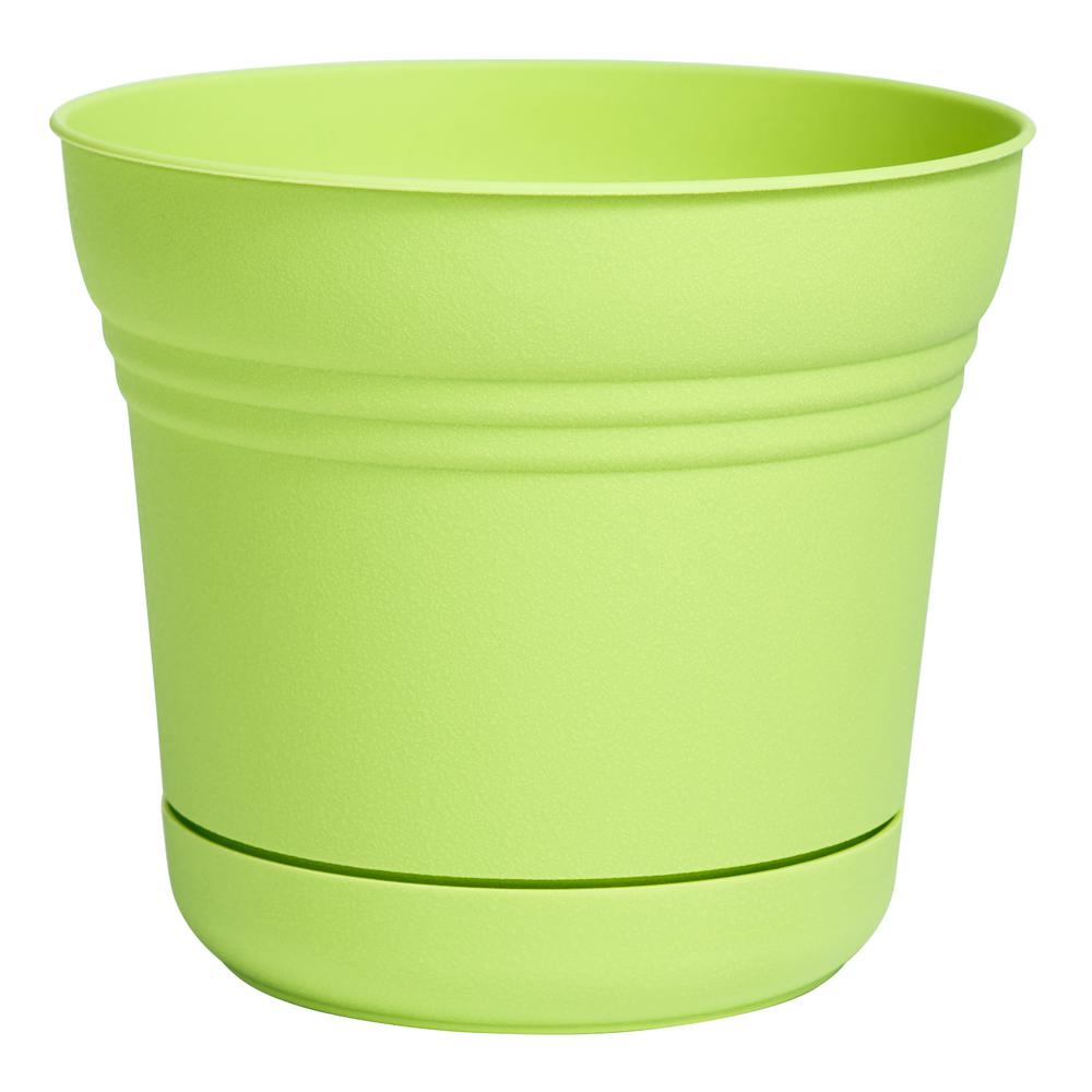 Saturn 7 in. Honey Dew Plastic Planter
