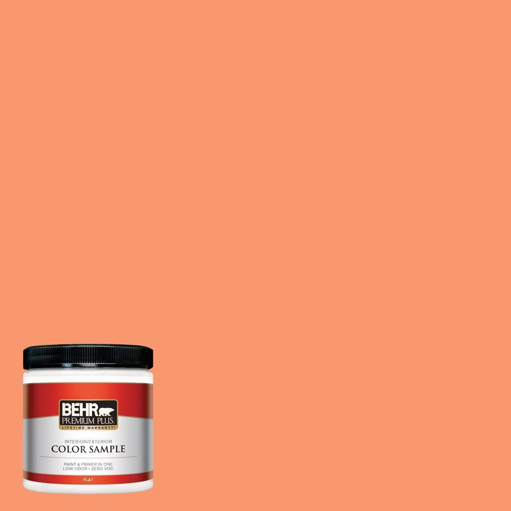 BEHR Premium Plus 8 oz. #220B-5 Autumn Arrival Interior/Exterior Paint Sample