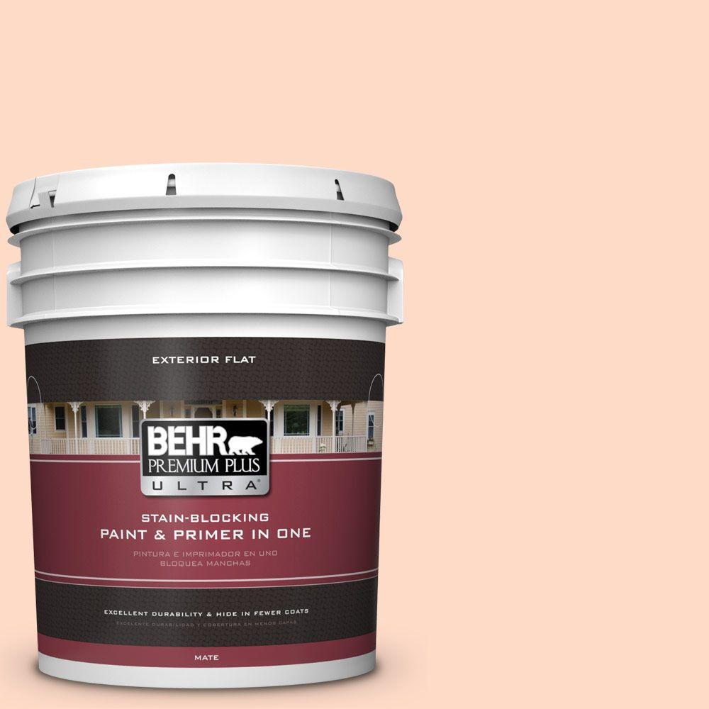 BEHR Premium Plus Ultra 5-gal. #230A-2 Beach Trail Flat Exterior Paint
