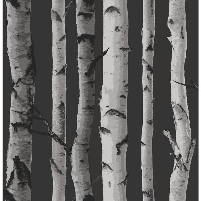 56.4 sq. ft. Distinctive Black Birch Tree Wallpaper