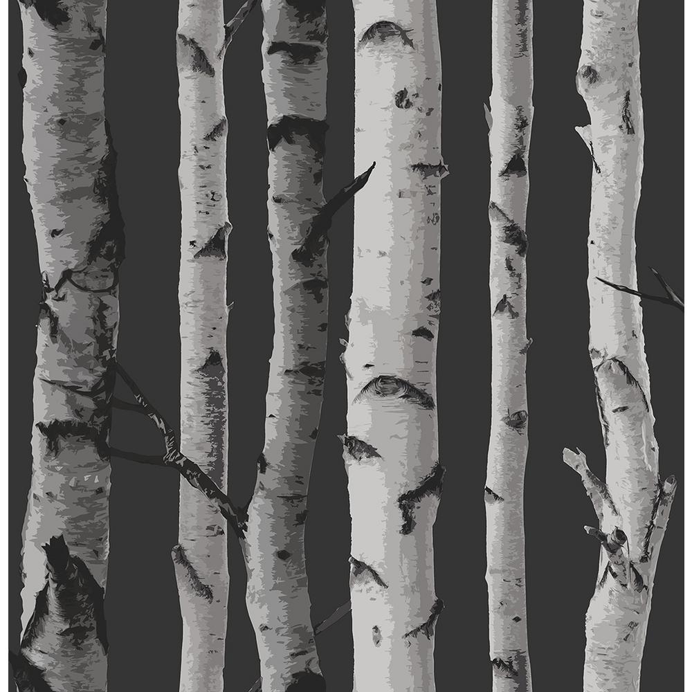 8 in. x 10 in. Distinctive Black Birch Tree Wallpaper Sample