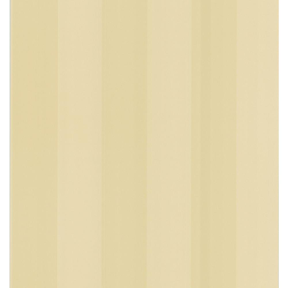 National Geographic 56 sq. ft. 3 in. Stripe Wallpaper