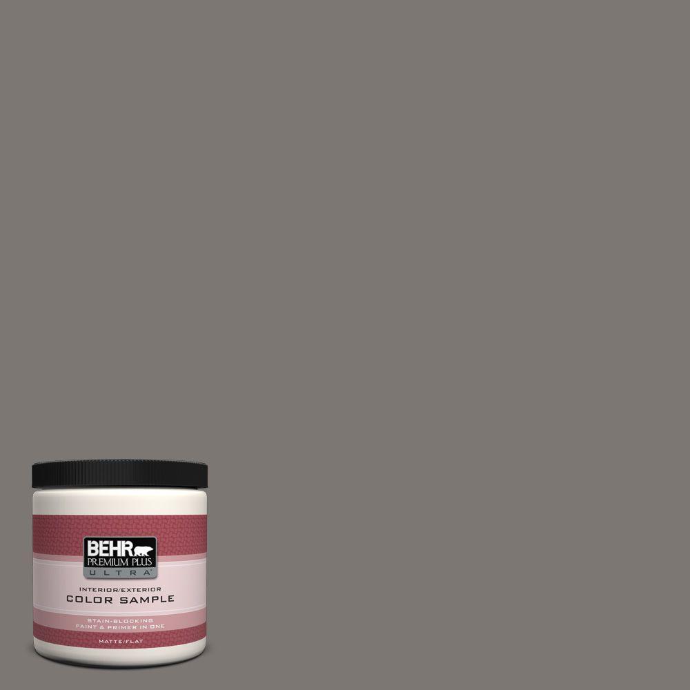BEHR Premium Plus Ultra 8 oz. #790F-5 Amazon Stone Interior/Exterior Paint Sample