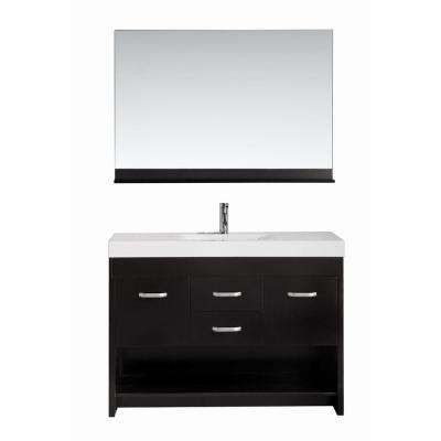 Citrus 48 in. W x 18 in. D Single Vanity in Espresso with Acrylic Vanity Top and Mirror in White