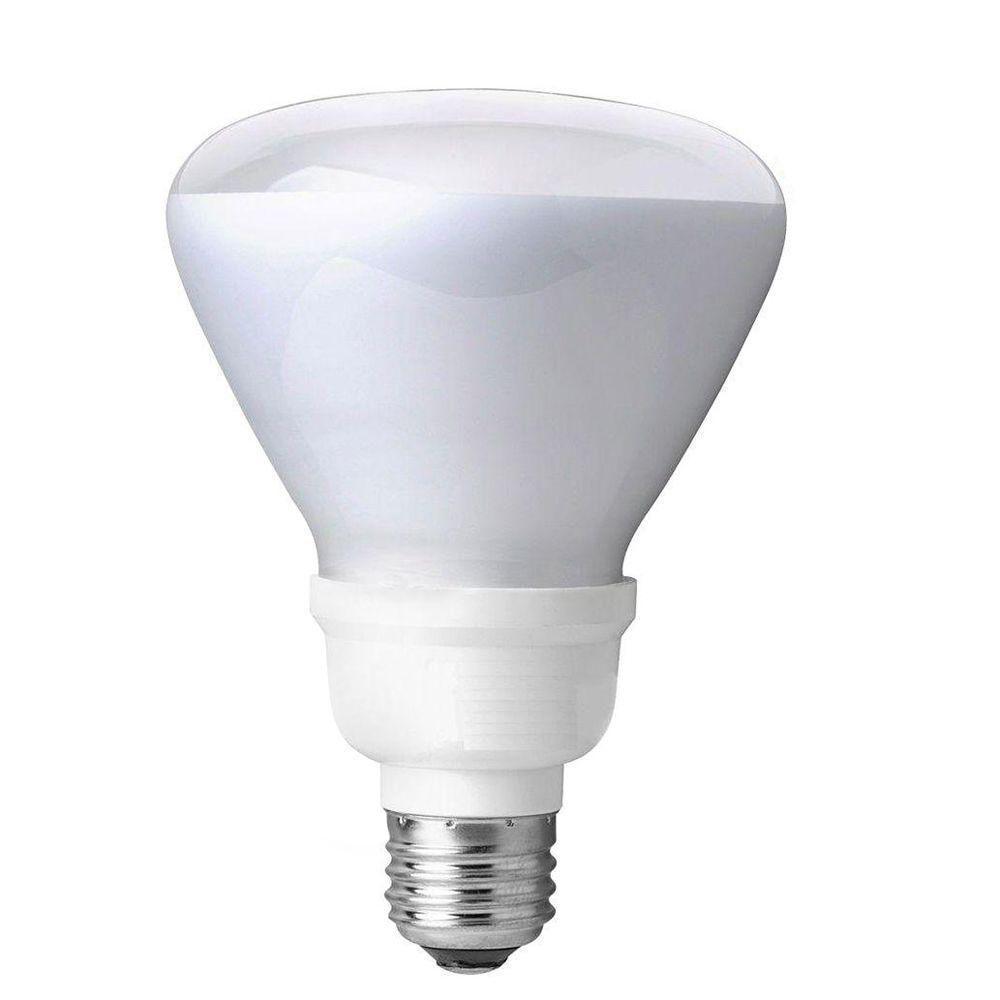 EcoSmart 65W Equivalent Soft White (2700K) R30 CFL Flood Light Bulb (4-Pack)