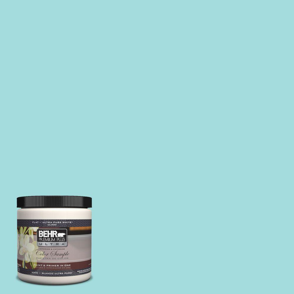 BEHR Premium Plus Ultra 8 oz. #500A-3 Aqua Spray Flat Interior/Exterior Paint and Primer in One Sample