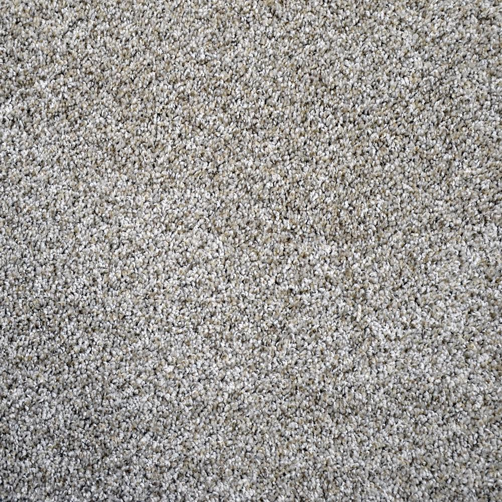 Carpet Sample-Thoroughbred ll -Color Indy Texture 8 in  x 8 in