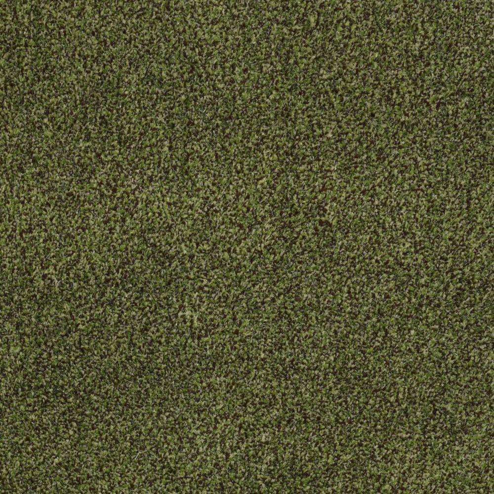 TrafficMASTER Toulon - Color Spanish Moss 12 ft. Carpet