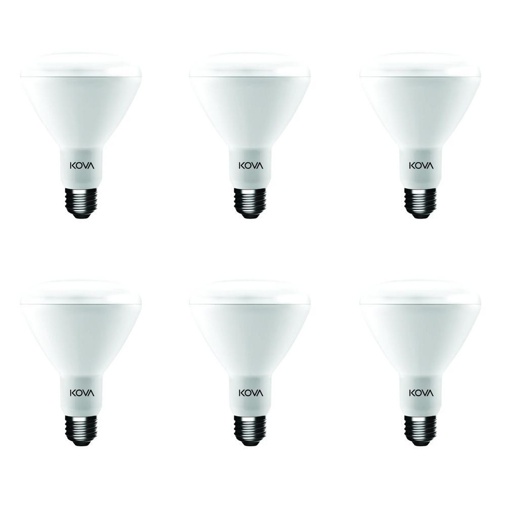 65-Watt Equivalent BR30 Dimmable ENERGY STAR 2700K LED Light Bulb, Soft White (6-Pack)