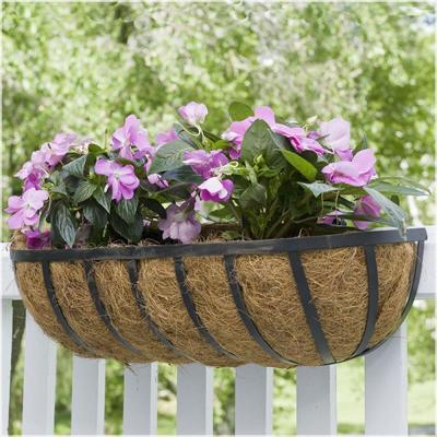 24 in. Metal English Horse Trough Coco Planter