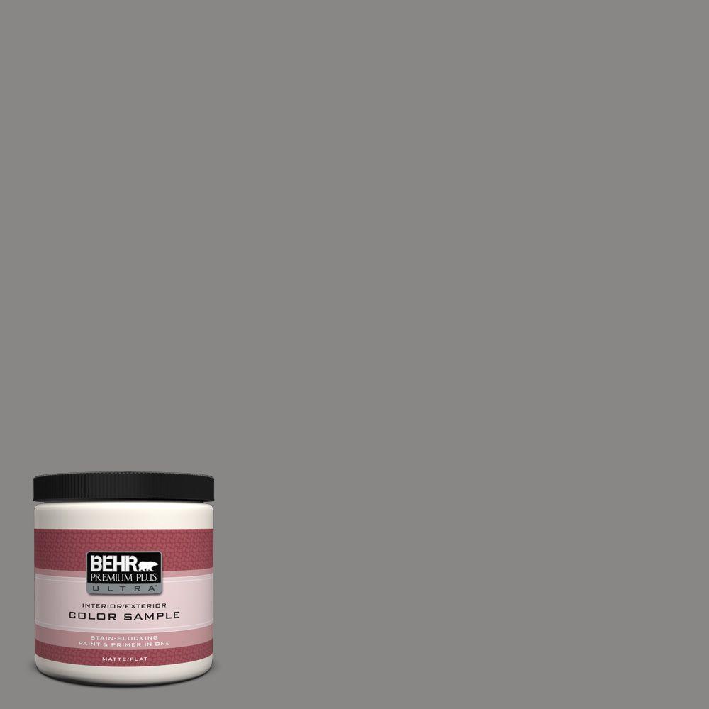 BEHR Premium Plus Ultra 8 oz. #UL260-4 Pewter Ring Interior/Exterior Paint Sample