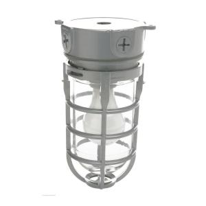 Woods Industrial 1-Light Gray Outdoor Weather Tight Flushmount Light Fixture by Woods