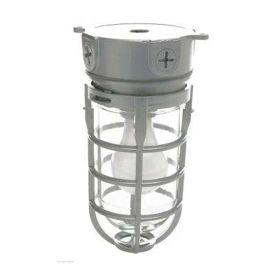 Weather Tight Industrial Ceiling Fixture