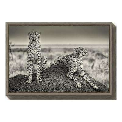 """""""Two Cheetahs watching out"""" by Henrike Scheid Framed Canvas Wall Art"""
