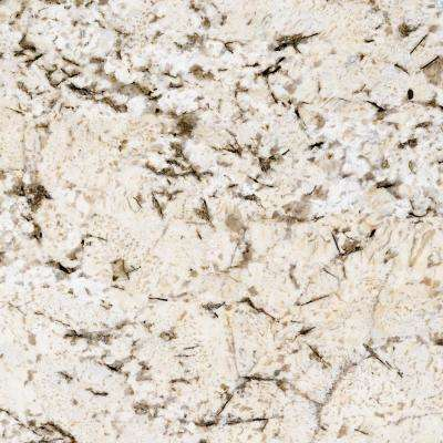 3 in. x 3 in. Granite Countertop Sample in White Sand