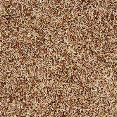 Carpet Sample - Royal Step - In Color Amber Mist 8 in. x 8 in.