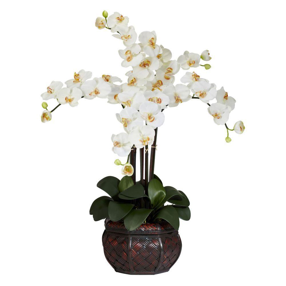 31 in. H Cream Phalaenopsis with Decorative Vase Silk Flower Arrangement